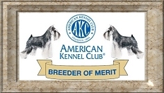 Wy-O's Miniature Schnauzers - AKC Breeder of Merit